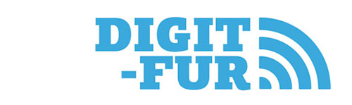 DIGIT-FUR – Impacts of the Digital Transformation in the Wood Furniture Industry